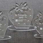 Award plexiglas